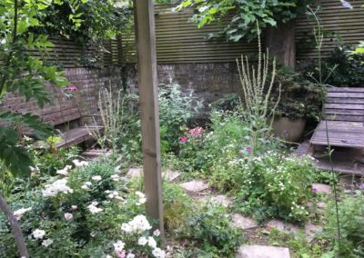 j-large-garden-celine-david-garden-design-landscaping-london-img_2836-1280