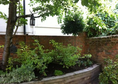 r-traditional-garden-celine-david-garden-design-landscaping-london-picture-3