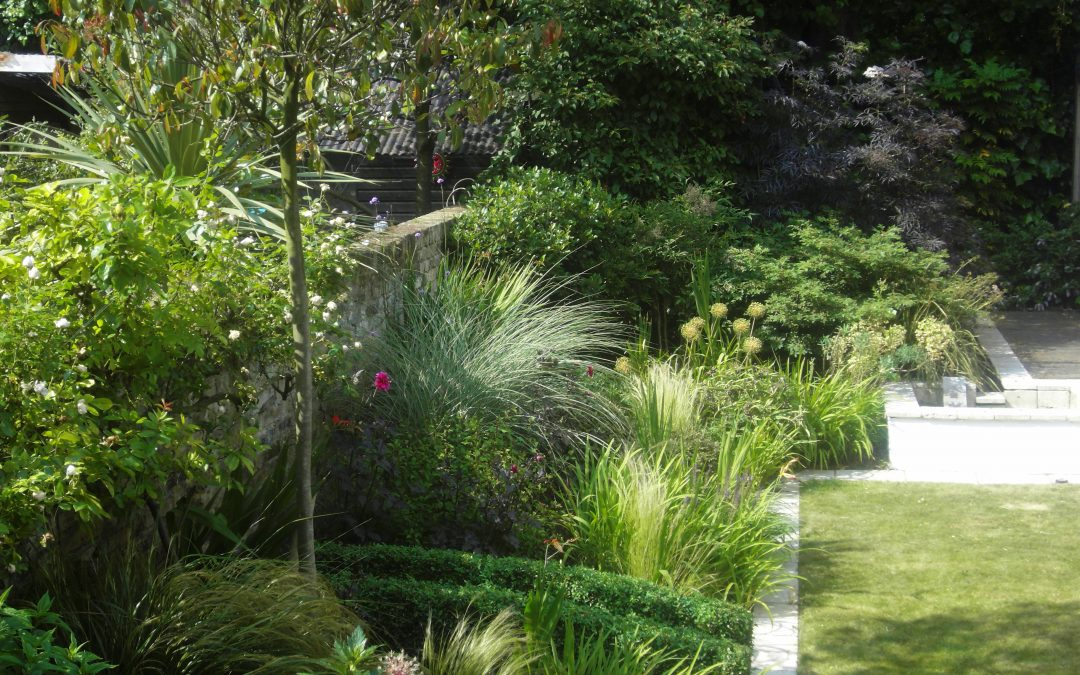 Contemporary Borders Garden Design